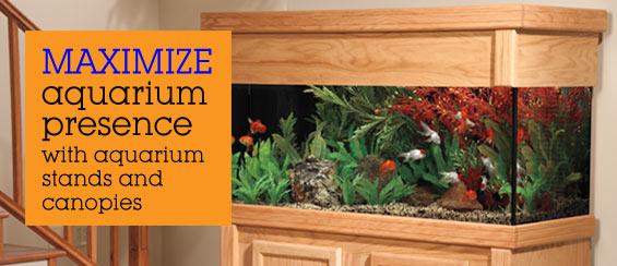 Aquarium Stands And Canopies