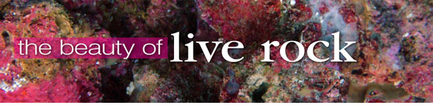 Live Rock: Cultivate Beauty & Biological Diversity