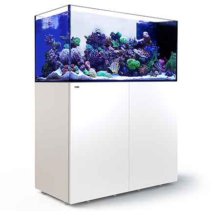 Red Sea Reefer Peninsula 500 Rimless Reef Ready System White