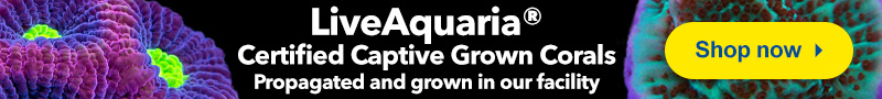 LiveAquaria Certified Captive Grown Corals